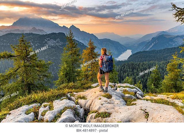 Hiker looks at mountain panorama, view over Königssee from Feldkogel, left Watzmann Südspitze and Watzmann-Kinder, right Funtenseetauern, sunset