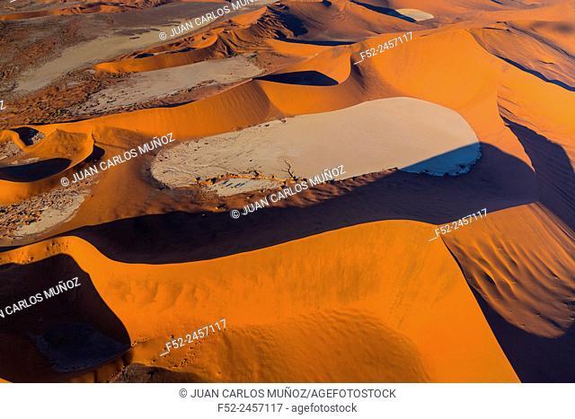 Deadvlei, Namib-Naukluft National Park, Namibia, Africa