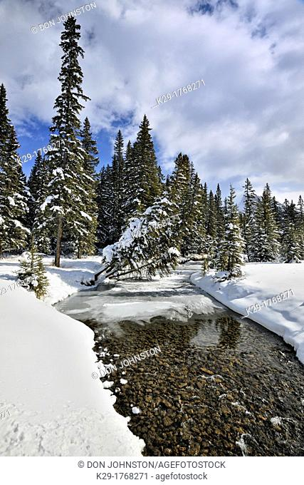 Late-winter snow and open water at Echo Creek, Banff, Banff National Park, Alberta, Canada