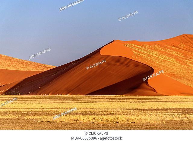 Dune 45 the star dune composed of 5 million year old sand Sossusvlei Namib Desert Naukluft National Park in Namibia Africa