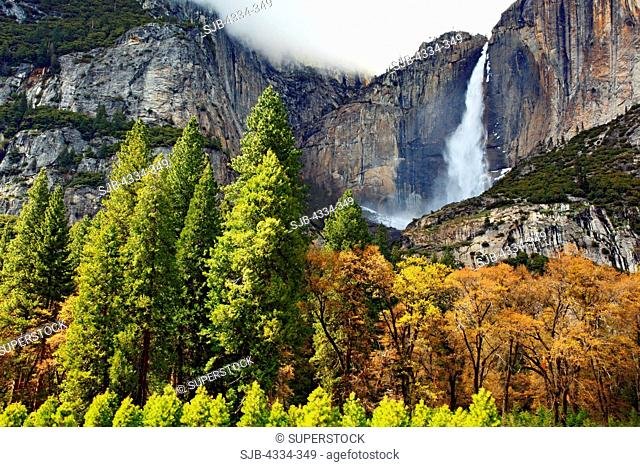 Yosemite Falls, the highest waterfall in North America, spills off a high granite wall into the Yosemite Valley