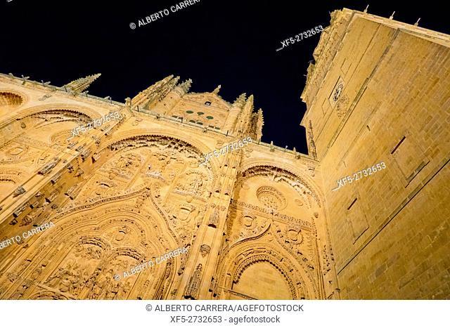 Main Facade, New Cathedral of Salamanca, Cathedral of the Asunción de María, Gothic Renaissance Baroque Style,16th-18th century
