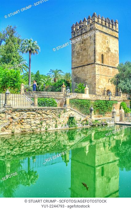 HDR of one of the water features of the The Alcázar de los Reyes Cristianos also known as Alcázar of Córdoba, Córdoba, Andalusia, Spain