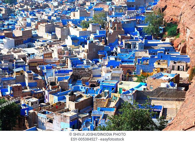 Blue houses in Jodhpur beneath Pachetia hill ; Jodhpur ; Rajasthan ; India
