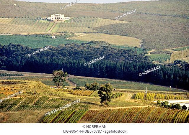 Cape Wine Route, Hemel & Aarde Valley, Hermanus, Western Cape