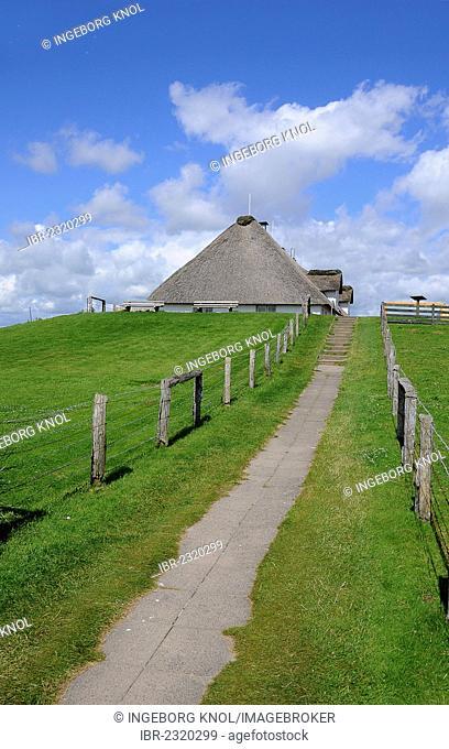 Thatched house, Hamburger Hallig, North Frisia, Schleswig-Holstein, Germany, Europe, PublicGround