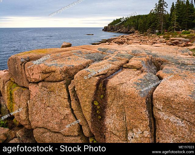 Rocky Coast near Otter Cliffs in Acadia National Park on Mount Desert Island, Maine, USA