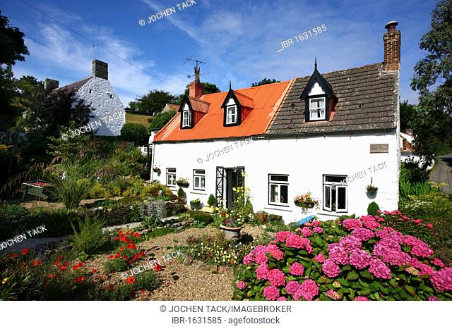 Typical Guernsey stone houses with lots of floral decorations and lush gardens at Les Nicholls, Guernsey, Channel Islands, Europe