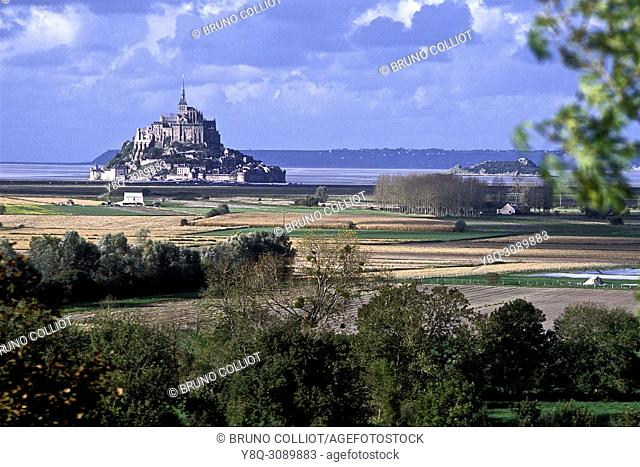 view of Mont Saint Michel and the polders, cultivable areas, carrots, leeks, garlic, Normandy, France