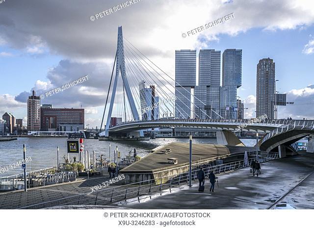 Erasmusbrücke und Hochhäuser in Rotterdam, Südholland, Niederlande | Erasmus bridge and skyscrapers, Rotterdam, South Holland, Netherlands