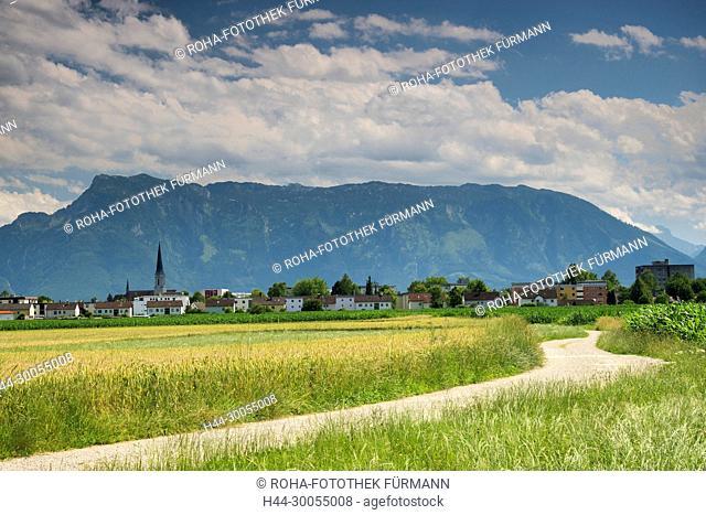 Bayern, Oberbayern, Berchtesgadener Land, Berchtesgaden, Himmel, blauer Himmel, Panorama, Freilassing, Rupertiwinkel, Stadt, Stadtansicht, Voralpenland
