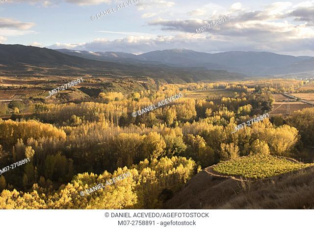 Najerilla autumn lanscape, La Rioja wine region, Spain, Europe