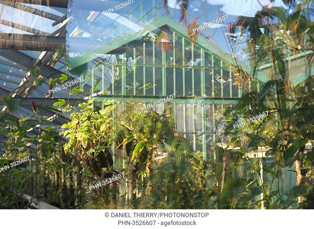 Paris 16th district. Garden of the greenhouses of Auteuil. A greenhouse