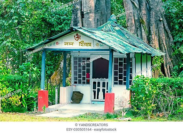 Shiva temple under a huge tree, Deban, Namdapha National Park, Arunachal Pradesh, India