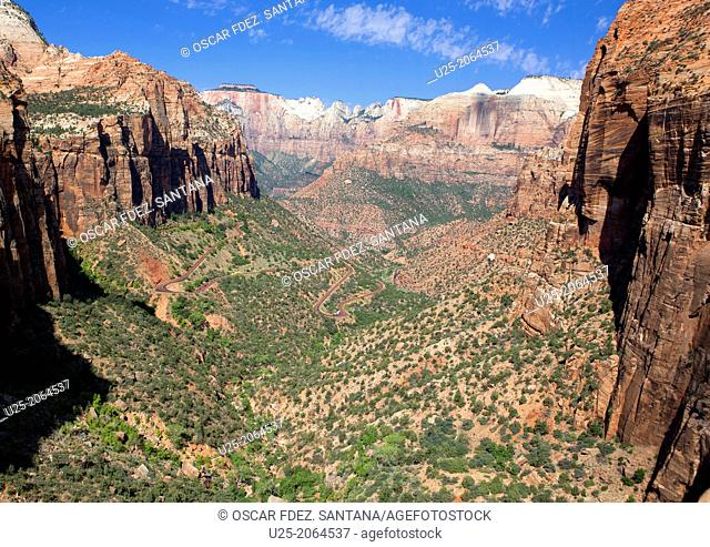 Canyon Overlook Trail, Zion National Park, Springdale, Utah, USA