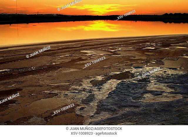 Sunset on the salt marshes of the Odiel Marshes Natural Park. Biosphere Reserve. Huelva. Spain