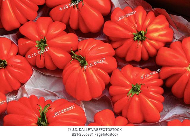 Oxheart tomatoes, France