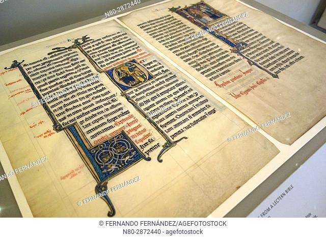 Leaves from a Lectern Bible. Ink on parchment, with pigment and gold. Possibly County of Hainaut. About 1260-1270. The Victoria and Albert Museum
