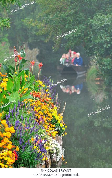 BOAT RIDE THROUGH THE HORTILLONNAGES OR FLOATING GARDENS, AMIENS, SOMME 80, FRANCE