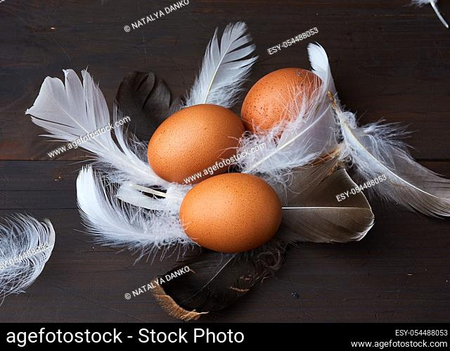 three brown whole chicken eggs in the middle of white feathers on a wooden background, close up