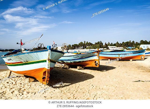 Fishing port. Hammamet, Nabeul Governorate, Tunisia