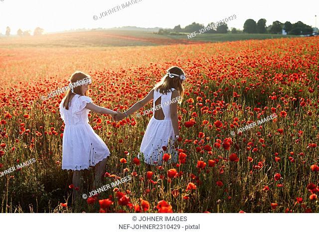 Girls walking in poppy field