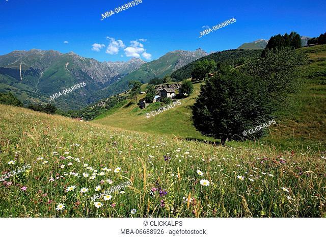 Mount Vercana, Como, Lombardy, Italy