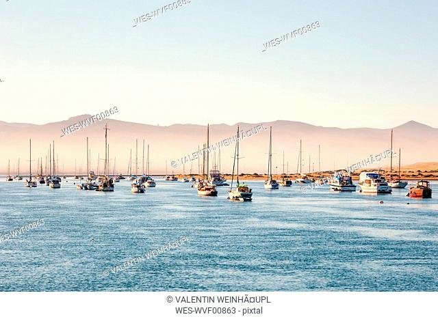USA, California, Morro Bay, port of Morro Bay, sailing boats