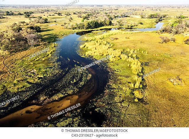 The Gomoti River with its adjoining freshwater marshland, aerial view, Okavango Delta, Moremi Game Reserve, Botswana