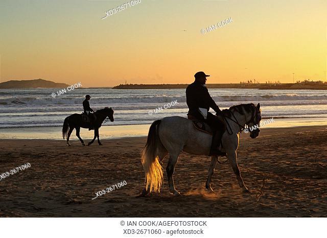 horses on beach at Essaouira, Morocco