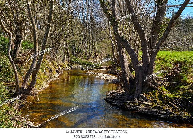 Oria River, Segura, Gipuzkoa, Basque Country, Spain