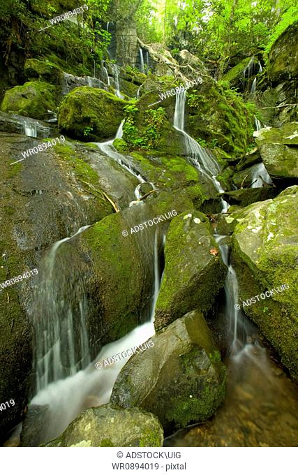 Cliff Branch Falls, The Place of a Thousand Drips, Great Smoky Mountains National Park, TN, USA