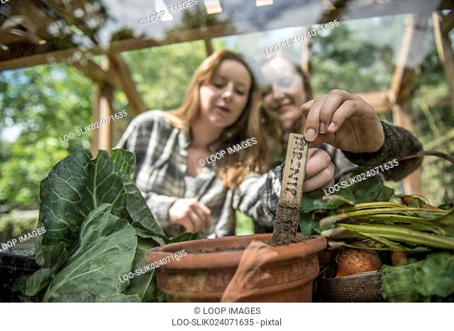 Two young gardeners work in their greenhouse