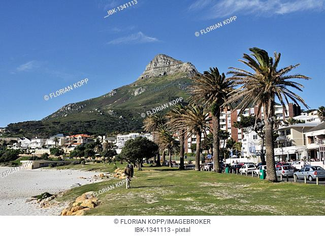View towards Signal Hill, Cape Town, South Africa, Africa