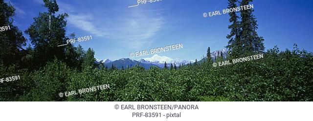 Mt McKinley AK