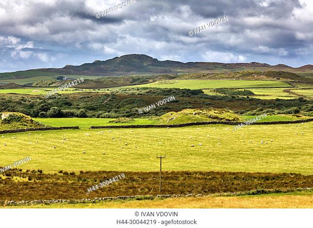 Landscape, Islay, Inner Hebrides, Argyll, Scotland, UK