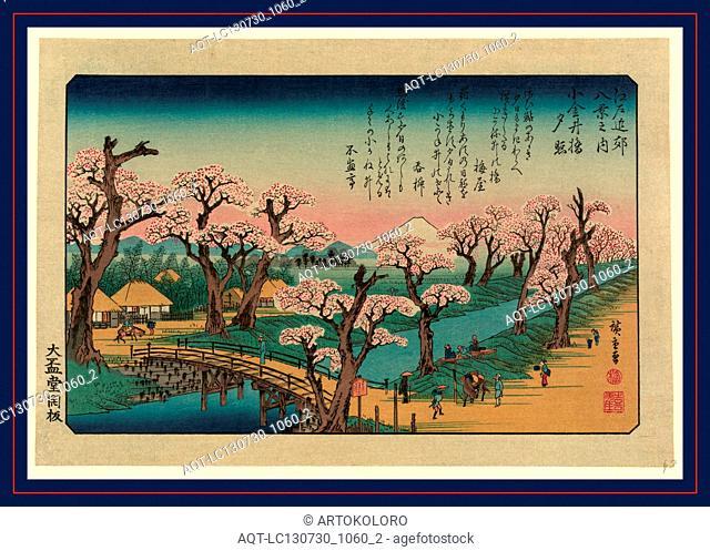 Koganeibashi no sekisho, Evening glow at Koganei Bridge., Ando, Hiroshige, 1797-1858, artist, [1838, printed later], 1 print : woodcut, color