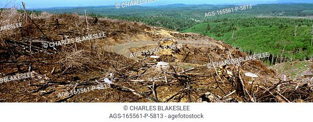 Agriculture - Destruction caused by clear cut logging in the Siuslaw National Forest, Northern Oregon Coast Range / OR - Tillamook County