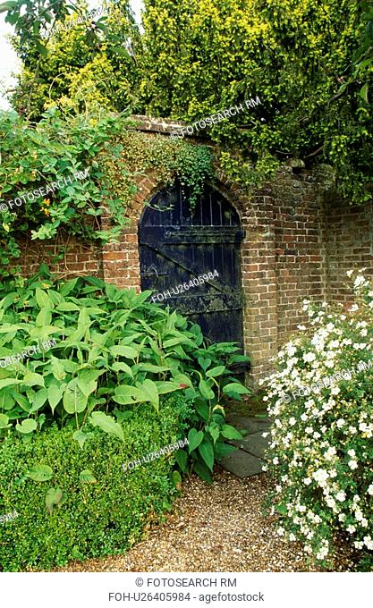 Shrub in border with clipped low hedge in walled country garden in summer