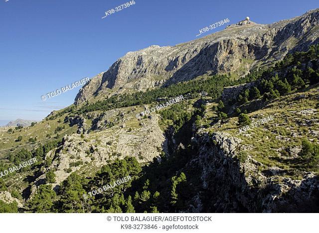 Puig Major y Morro den Pelut, Fornalutx, Mallorca, balearic islands, Spain