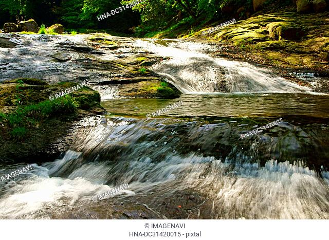 Fresh green Kikuchi Gorge, Kumamoto Prefecture, Japan