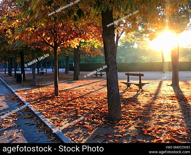 El Retiro park in Autumn. Madrid, Spain
