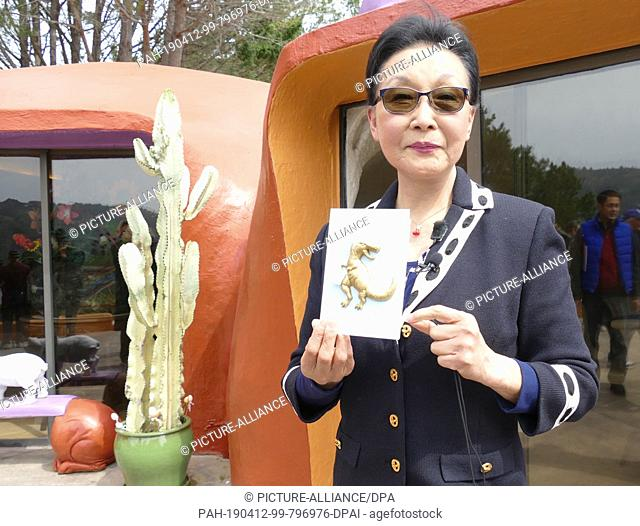 11 April 2019, US, Hillsborough: Owner Florence Fang stands with a dinosaur map in front of her flintstone house in Hillsborough near San Francisco