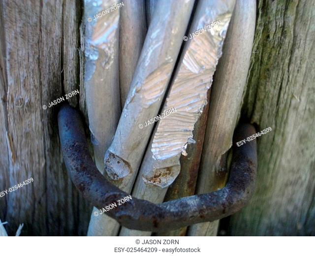 Close Up Detail of Bundle of Cut Sticks Secured with Rusted Iron Clamp Against Weathered Wooden Beam