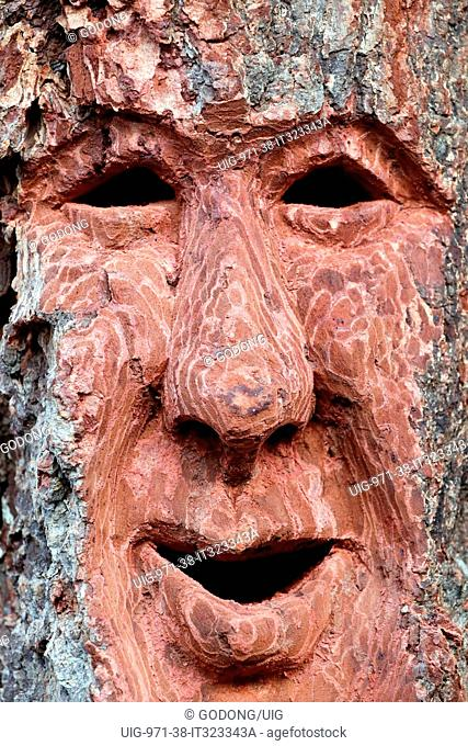 Sant Orso fair. Artists and craftsmen from Valle d'Aosta proudly display their works. Mask. Wood carving. Aosta. Italy