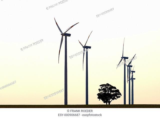 single tree from wind turbines
