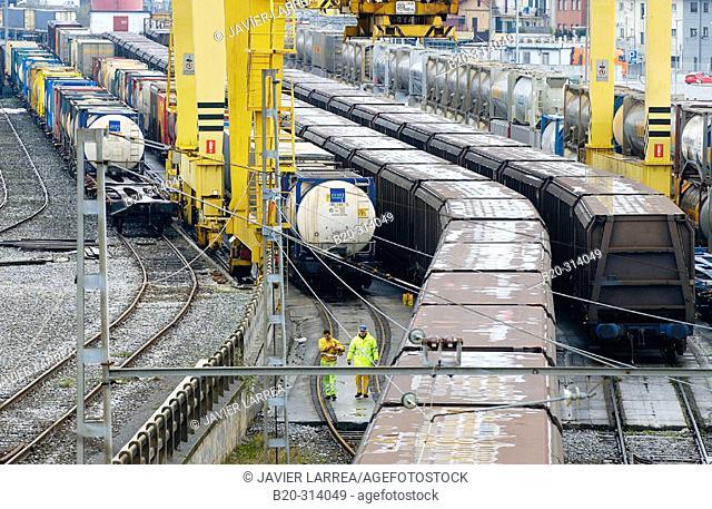 Freight trains. Irun. Guipúzcoa (Spanish-French border)