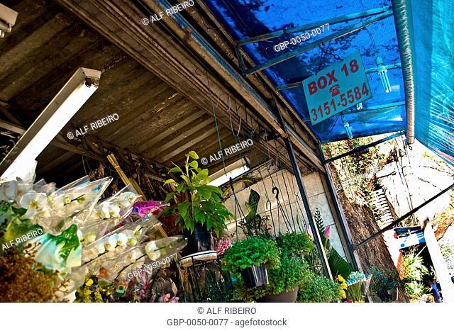 Flower stalls; Dr. Arnaldo Avenue; Sao Paulo; SP; Brazil