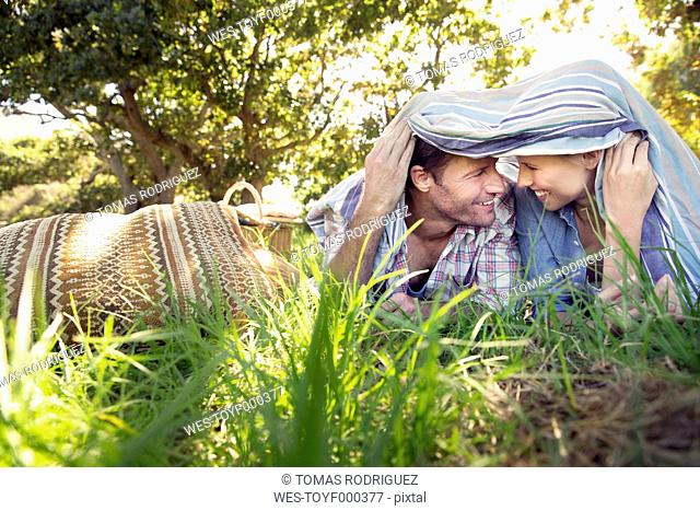 Happy couple lying on meadow under a blanket