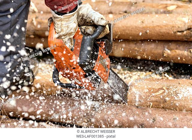 Germany, Muehlenbach, logger's hands sawing tree trunk with motor saw